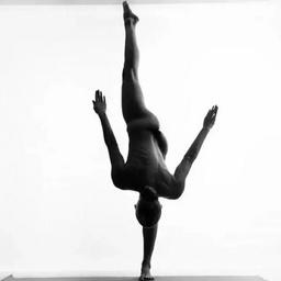 - 瑜伽体系精讲