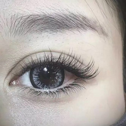 - 日本笙花自然款0.15双眼120
